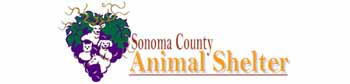 Sonoma County Animal Shelter
